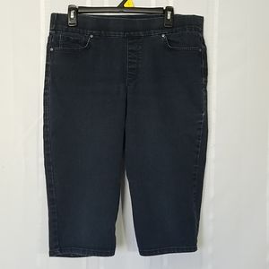 Gloria Vanderbilt Long Slim Slip On Shorts 14